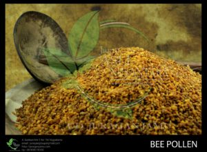 jual bee pollen asli